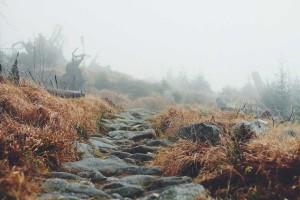 Barfuss gehen - ein Weg zu natürlichem Wohlbefinden